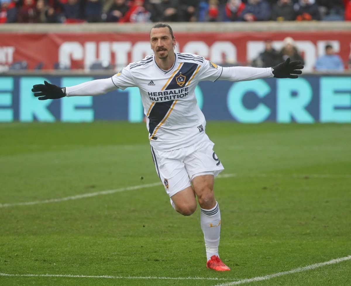 """Ibrahimovic al Bologna, Bigon: """"Contatti tra lui e Mihajlovic. La scelta è solo sua"""""""