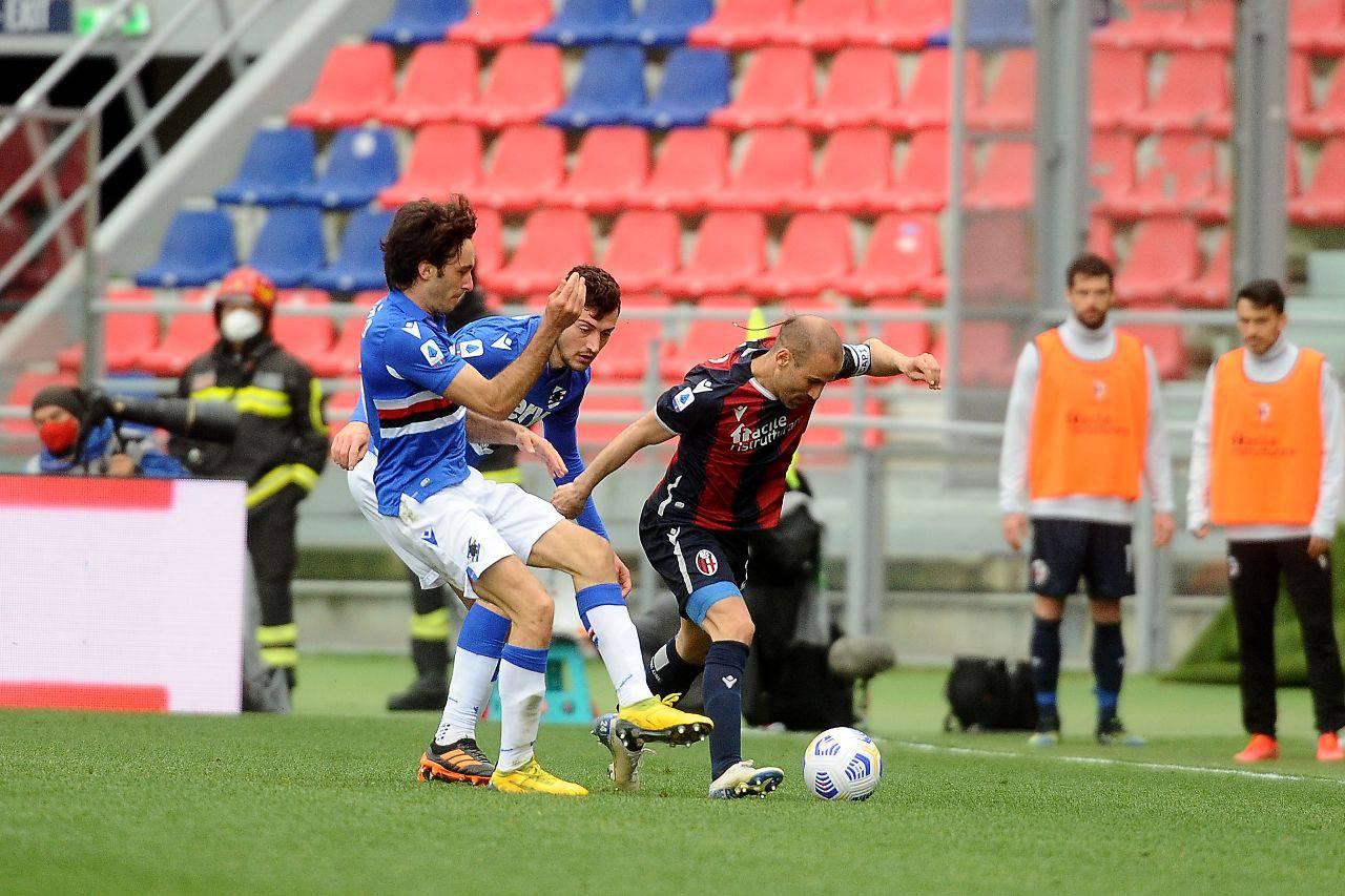 Bologna Sampdoria Highlights